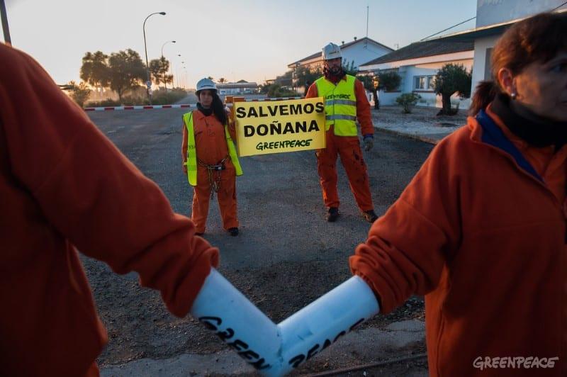 Miembros de Greenpeace durante una acción de protesta en Doñana.